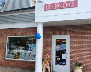 Toy Chest 3